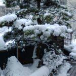 まさかのドカ雪続きで・・(◎_◎;)